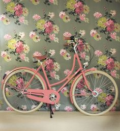 pretty bicycle and wallpaper