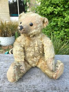 OLD VINTAGE ANTIQUE FARNELL GOLD MOHAIR PLUSH TEDDY BEAR BOOT BUTTON EYES c 1915 #Farnell