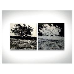 $520 'Trees' is an #abstract #metal #art composed of two different pieces: a #black and #white piece and a #negative piece of the same #portrait. The #digital print of a #magnificent tree on a #prairie with the #open #sky as a background gives this piece an #elegant #contrast between the black print and the #sheen of the #aluminum #canvas. This ultra-modern wall #decor is a great piece to #converse about and a #fantastic piece to place in any #modern or #contemporary themed space. #Tree