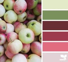Palette by Design Seeds. Colour Pallette, Color Palate, Colour Schemes, Color Combos, Design Seeds, Pantone, Palette Design, Color Swatches, Color Stories