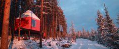 Treehouse Retreats - The Tree Hotel, Blue Cone