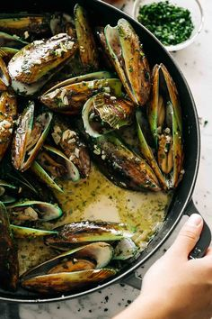 French Steamed Mussels in a delicious white wine and garlic cream broth is a versatile seafood dish Chilli Mussels, Grilled Mussels, Garlic Mussels, Baked Mussels, Mussels White Wine, Steamed Mussels, Garlic Butter Mussels Recipe, Garlic Sauce, Gratin