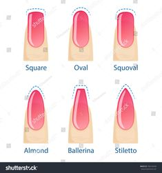 Nail manicure, set of nails shapes - oval, square, almond, stiletto, ballerina, squoval. Vector