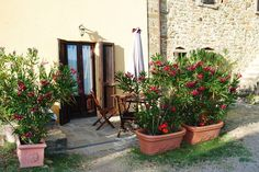 Bioagriturismo Ca Faggio, Tuscany. Our biological holiday farm is certified by ICEA http://www.organicholidays.com/at/417.htm