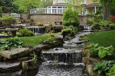 Residential Watergardens - traditional - landscape - louisville - Pond and Fountain World, Inc.