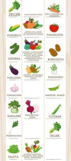 A valaha volt legfontosabb táblázat, amit konyhakertész látott. Organic Mulch, Organic Gardening, Gardening Tips, Urban Gardening, Low Growing Shrubs, Growing Plants, Companion Gardening, Growing Tomatoes In Containers, Plant Diseases