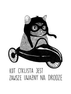 Koty miejskie by martiszu ludvikez, via Behance - I ABSOLUTELY LOOOVE this one!