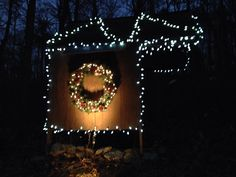 Robinson Family Light Display 2013