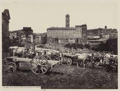 Roman Forum, taken from the Farnesi Gardens, Italian, about 1860 - 1868 Roman Forum, Ancient Romans, Roman Empire, Rome, Dolores Park, Painting, Instagram, Gardens, Romans