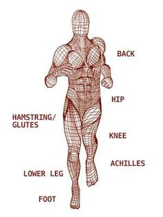 Understanding FASCIA: may be the missing piece for your lingering injury Fascia Stretching, Fascia Blasting, Yoga Anatomy, Human Anatomy And Physiology, Sports Massage, Massage Therapy, Body Therapy, Physical Therapy, Massage