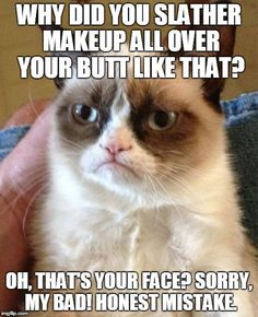 Grumpy Cat definitely doesn't want to kiss and make up :)
