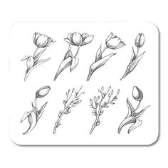 Tulip Drawing, Tulip Painting, Leg Tattoos, Flower Tattoos, Tatoos, Hand Outline, Flower Sketches, Arte Floral, Future Tattoos