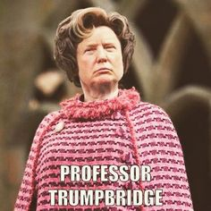 Thanks Internet! Trump=Delores Umbridge.