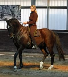 Marijke de Jong  Straightness Training and the Academic Art of Riding
