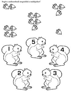 Hands-on Squirrel and Acorn themed activities to help children learn to read, write and learn math skills. Scurry like a squirrel. Fall Preschool, Preschool Kindergarten, Kindergarten Worksheets, Toddler Preschool, Preschool Crafts, Autumn Activities, Toddler Activities, Preschool Activities, Early Learning