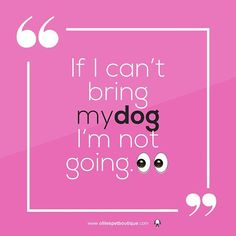Were lucky - we work with our doggies! Instagram Cartoon, Pet Boutique, Wednesday Wisdom, Mantra, Dublin, Doggies, Quotes To Live By, Bring It On, Pets