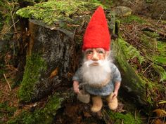 Angela's Handsome Gnome