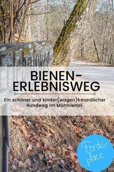 Eine einfache, kinderfreundliche und vor allem kinderwagenfreundliche Wanderung ist der Bienen-Erlebnisweg in Zwettl an der Rodl im schönen Mühlviertel. Egal ob im Frühjahr, Sommer, Herbst oder Winter - der Weg hat zu jeder Jahreszeit seinen Reiz und ist eigentlich immer begehbar. #Mühlviertel #Oberösterreich #Wanderung #Familie Wanderlust, The Good Place, To Go, Amazing Places, Beautiful, Traveling With Baby, Beautiful Landscapes, Waterfall, Road Trip Destinations