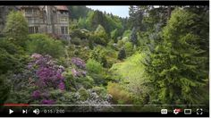 Video tour of Cragside Gardens, the setting for Carrie Turansky's English historical novel, Shine Like the Dawn. English Country Gardens, Carrie, Beautiful Gardens, Dawn, England, Tours, Image, English