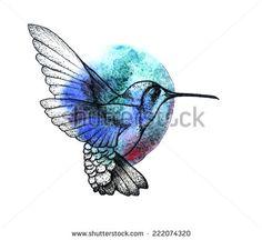 Hand drawn colibri within colorful watercolor spot.