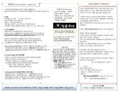 2013년 8월 4일 주보 표지 a
