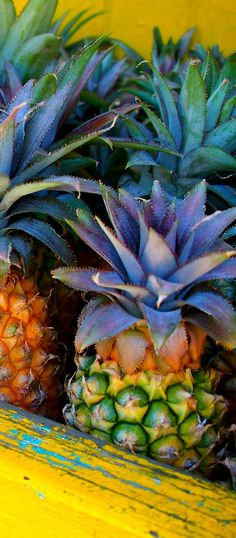 #caribe #caribbean #fruit #pineapple #hotcolours