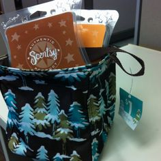 A great idea for the Thirty One Gifts Littles Carry All. Storage for Sentsy!