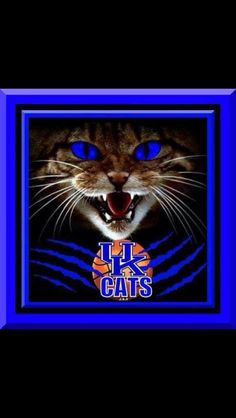 UK  https://www.fanprint.com/licenses/abilene-christian-wildcats?ref=5750