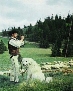 Slovak countryside