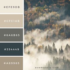 Color Palettes 447756387955864743 - View of misty fog mountains in autumn Color Palette – Ave Mateiu Source by catherinegullon Rustic Color Palettes, Color Schemes Colour Palettes, Fall Color Palette, Rustic Colors, Colour Pallette, Color Combos, Colors Of Autumn, Colors Of Nature, Rustic Color Schemes
