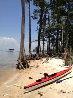 Fairhope, AL~~ my sister's kayak! :)