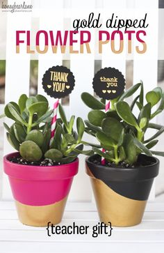 Gold dipped flower pots--so cute for teacher gifts!