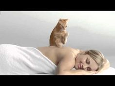 "Cat's Pride Fresh & Light Massage Cat - I'm not a ""cat"" person, but I love these commercials."