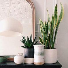 grupo de jarrones con plantas sobre chimenea #cerámica #decoración #www.resulabrador.com