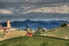 The Intoxication of Piedmont: The food, the culture, and of course the people are nearly as intoxicating as the wines of Piemonte.