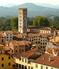Some roofs in Lucca / Telhados em Lucca