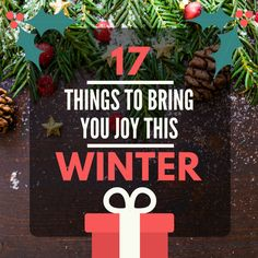 The Square Owl - 17 Things To Bring You Joy This Winter