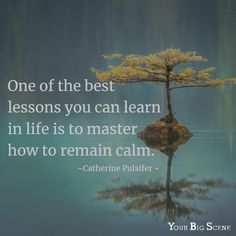 Keep calm and. keep calm! Take a few minutes every day to think about the things that matter most to you. Goal Quotes, Real Life Quotes, Courage Dear Heart, Tree Quotes, Find Your Why, Remember Why You Started, Perfect Word, Attitude Of Gratitude, Daily Meditation