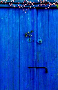 Blue door with a face!