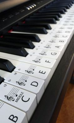 FREE SHIPPING WORLDWIDE!!!!  THIS SET IS ON AN OPAQUE WHITE GLOSS LABEL, IF YOU WOULD LIKE CLEAR PLEASE SEE MY OTHER ITEMS.  This set of label stickers is for a 61 key piano or keyboard, Labels are in order ready to be placed on the keys with middle C highlighted for easy reference. Labels are easily removed if needed. Each Label is 20mm wide x 48mm long on an Opaque Gloss white paper.  The labels will help anyone wanting to learn piano, with the letter of the key and note placement on the…