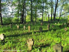 Panoramic view of the Imperial German First World War cemetery in Sece, Latvia.