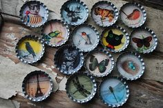 Recycled Bottle Cap Brooches by JenniferConway