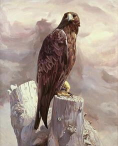 "Nerea - Golden Eagle Portrait"". Wildlife Art of Manuel Sosa ..."