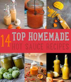 14 Top Homemade Hot Sauce Recipes by DIY Ready at http://diyready.com/top-14-hot-sauce-recipes/