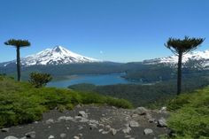 Temuco Chile Mount Rainier, South America, Places Ive Been, Around The Worlds, Landscape, City, Travel, Lakes, Landscapes