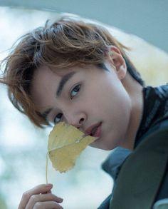Meteor Garden Cast, Meteor Garden 2018, Handsome Korean Actors, Handsome Boys, Handsome Faces, Guang Hong, Shan Cai, Hua Ze Lei, Dramas