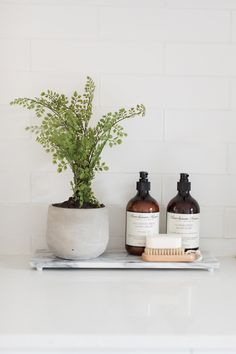7 ways to display indoor plants. Fern in cement pot, laundry styling, laundry vignette, laundry decor bathroomplants 637189047261972120 Decor, Indoor Plant Pots, Bathroom Styling, House Styles, Plant Decor, Laundry Decor, Bathroom Plants, Bathroom Decor, Cement Pots