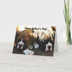 Happy Mother's Day Boxer puppies greeting card   wedding invitation ideas diy, sip n see invitations, mauve wedding invitations #invitationcard #invitationberau #invitationbirthday, 4th of july party Dyi Invitations, Sip And See Invitations, Invitation Ideas, Invitation Cards, Birthday Invitations, Mauve Wedding, Boxer Puppies, Card Wedding, 4th Of July Party