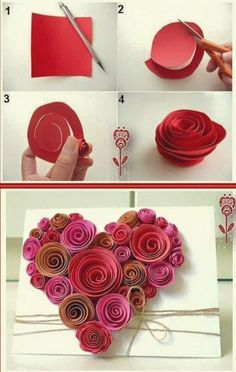 Roses for gift boxes