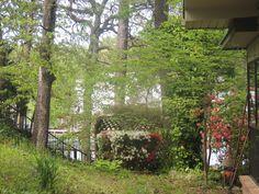 Nice view of Mick & Rudi's back yard